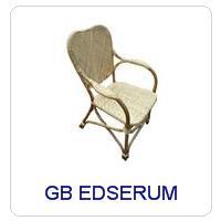 GB EDSERUM